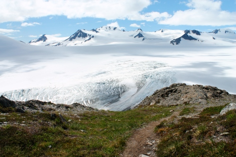 The Harding Icefield in July.