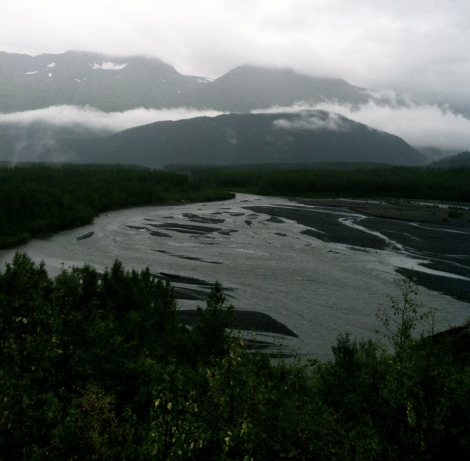 Water flowing across Exit Glacier's outwash plain.