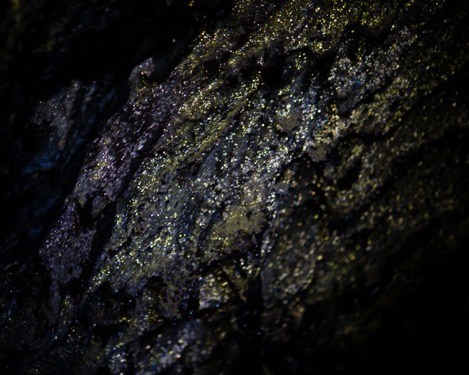 Constellations in the Dark Photo: Max Odland